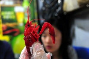 上海‧龍蝦一條街(壽寧路)吃小龍蝦和羊鞭